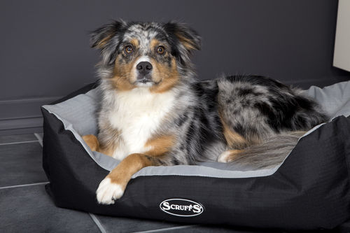 Scruffs Expedition Box Bed