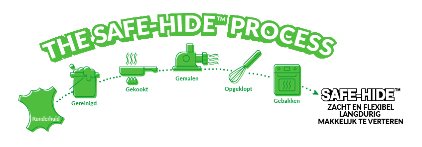 The_SAFE-HIDE_PROCESS_NL